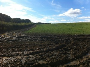 The mud stretched so far, it was impossible to figure out which way to go for the 'path'